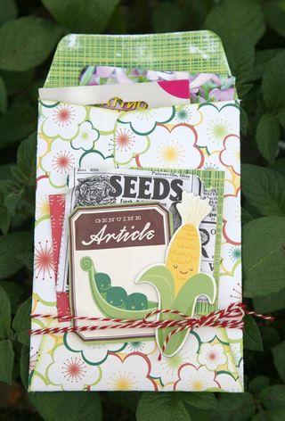 Gudrun_seeds-envelope_cosmo
