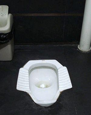 Oriental_toilet
