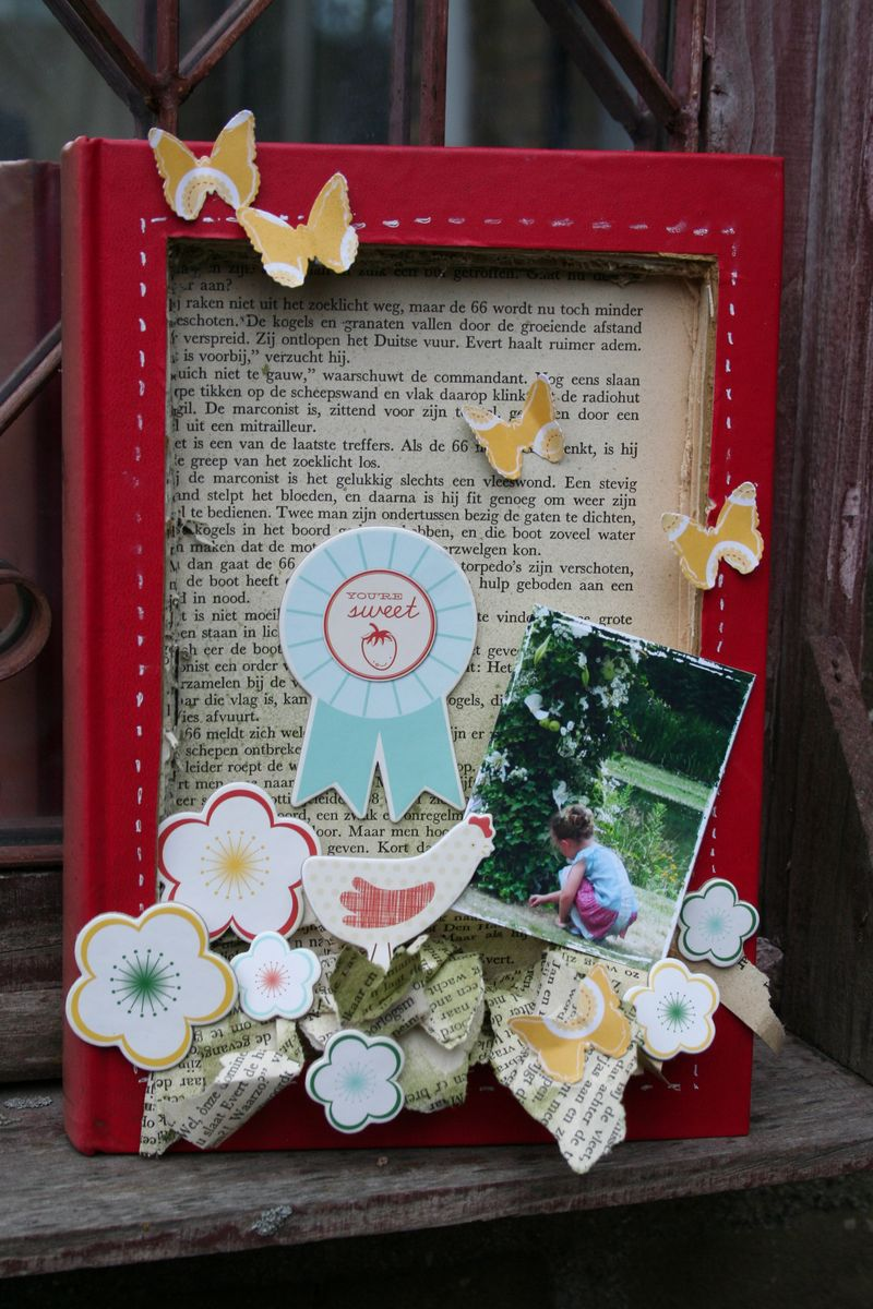 Shadow box_old book