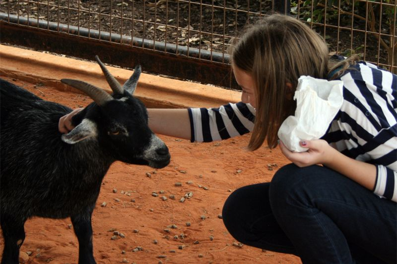 Kate meets goat
